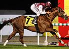 Al Shemali Pulls Duty Free Shocker