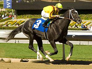 Albergatti Maiden Win 2/12/11