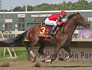 Alcomo wins the 2009 Greenwood Cup.