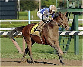 2003 Eclipse Sprinter of the Year: Aldebaran