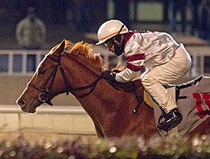 Alette wins the 2014 Illini Princess Handicap.