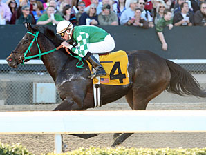 All About Allie wins the 2012 Dusty Road Stakes.