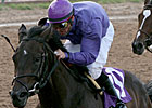 Nine Juvenile Fillies Seek Princess Crown