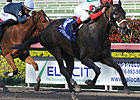 Arena Elvira Tops Go for Wand Field