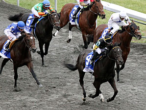 All Squared Away wins the 2012 Coolmore Lexington.