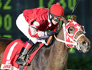 All Woman wins the 2013 Louisiana Jewel Stakes.
