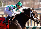 Alma d'Oro, Pleasant Prince Lead Iselin Field