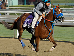 Peruvian-Bred Makes Breeders' Cup History