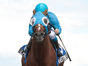 Alpha Bettor wins the 2013 Seagram Cup Stakes.