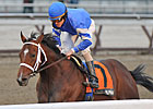 Haskin's Derby Trail: 03/22/2012