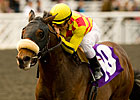 Alphie's Bet on Familiar Ground in Affirmed
