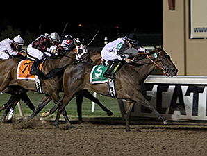 Alsvid wins the 2012 David M. Vance Sprint Stakes.
