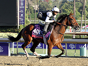 Alterite at Santa Anita for Breeders' Cup.