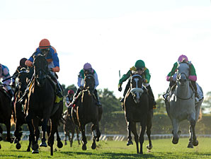 Alterite wins the 2013 Garden City Stakes.