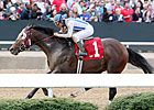 Alternation Remains in Training for Fall