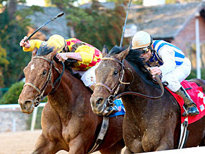 Alternation Still Possible for Arkansas Derby