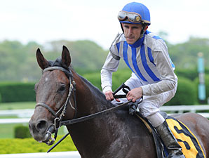 Alternation Back at Oaklawn in Essex Handicap
