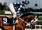 Slideshow: Alysheba