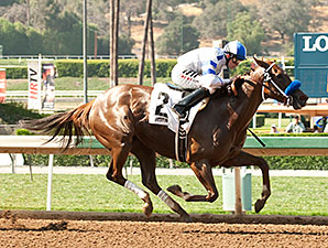 Amaranth wins the Desert Stormer Stakes.
