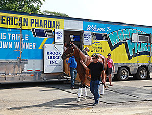 American Pharoah arrives at Monmouth Park for the Haskell July 29.