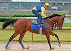 American Pharoah 'Went Great' in Slop at CD