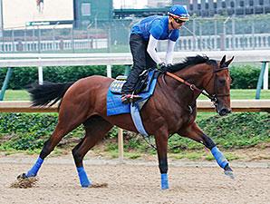 American Pharoah gallops at Churchill Downs May 31.