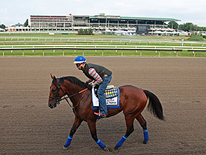 American Pharoah on the Monmouth Park track July 30.