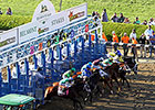 Belmont Park Still Buzzing After Triple Crown