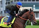 MarketWatch: American Pharoah's Stud Value