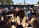 American Pharoah Returns Home at Santa Anita