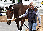 Preakness Stakes: Kentucky Horses Arrive
