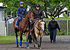 American Pharoah Gets First Look at Belmont