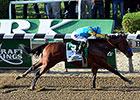 2015 Belmont Stakes Wrap