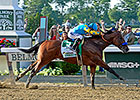 American Pharoah to Continue Racing
