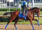 American Pharoah Gallops at Churchill Downs