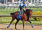 American Pharoah, Dortmund 'Look Good'