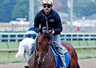 American Pharoah Back on Track at Churchill