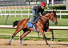 American Pharoah Impressive in Workout