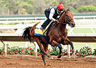 American Pharoah Wows in Del Mar Work