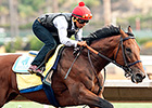 American Pharoah Expected at Monmouth July 29