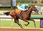 Bullet Move for Likely BC Juvenile Favorite
