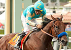 Baffert Impressed by American Pharoah Work