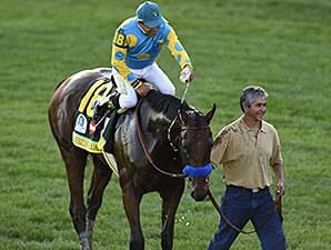 American Pharoah wins the 2015 Kentucky Derby.