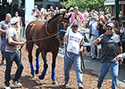 After Anxious Moment, American Pharoah Cool
