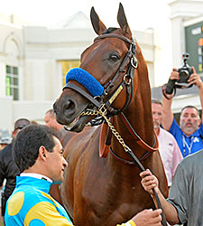 Seven to Face American Pharoah in Haskell