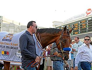 American Pharoah - Churchill Downs, June 13, 2015.