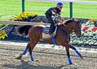 'Pharoah' Joins World's Best Racehorses List