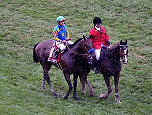 American Pharoah wins the 2015 Preakness Stakes.
