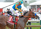 Zayat Sells Stud Rights to American Pharoah