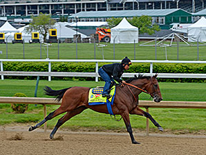 American Pharoah works toward the Kentucky Derby April 26.